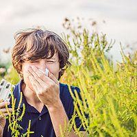 Volně prodejné léky na alergii a homeopatika