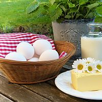 Bílkovinná dieta – 14-denní. 4 fáze. Co mohu jíst?