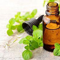 Oregánový olej – účinky, užívání, dávkování, ceny