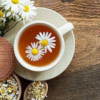 Co na podporu trávení? Vyzkoušejte bylinky na trávení, žaludek, slinivku a střeva