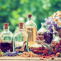 Přírodní léčba. Proč se léčit přírodním způsobem léčby?