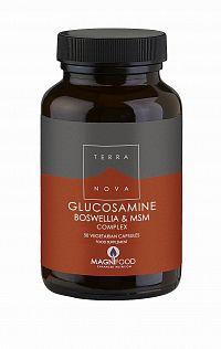 Terranova Glukosamin, Boswellia a MSM Komplex – Kloubní výživa 50 tbl.