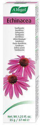 Echinacea zubní pasta - 100 g/72 ml (A.Vogel)