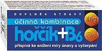 Hořčík + B6 tbl.60