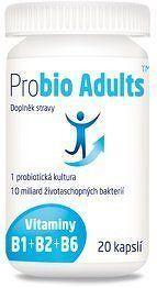 Probio Adults B1+B2+B6 cps.20