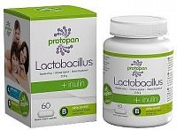 Protopan Lactobacillus + inulin tob.60