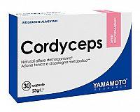 Cordyceps - Yamamoto 30 kaps.