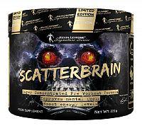 Scatterbrain - Kevin Levrone 222 g Fruit Punch