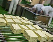 Jakub Lunter: Tofu má vysoký obsah vápníku, bílkovin a vlákniny