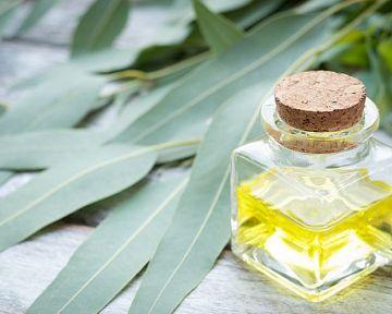 Eukalyptový olej pro děti i v těhotenství. Výborný na napařování
